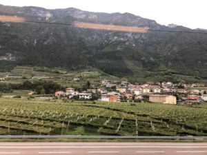 Valtellinas vinodlingar foto Maria Unde Westerberg