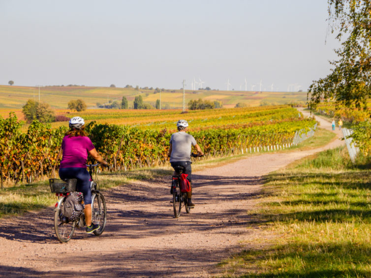 Cykla längs Canal du Midi