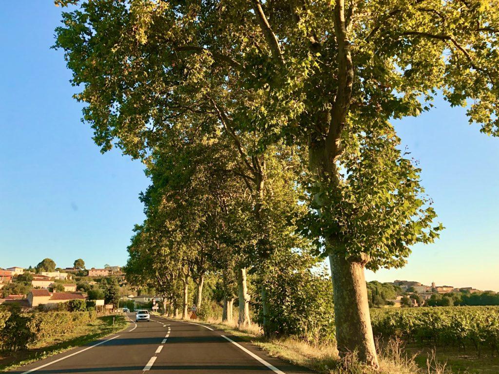 På väg till Pézenas foto Maria Unde Westerberg